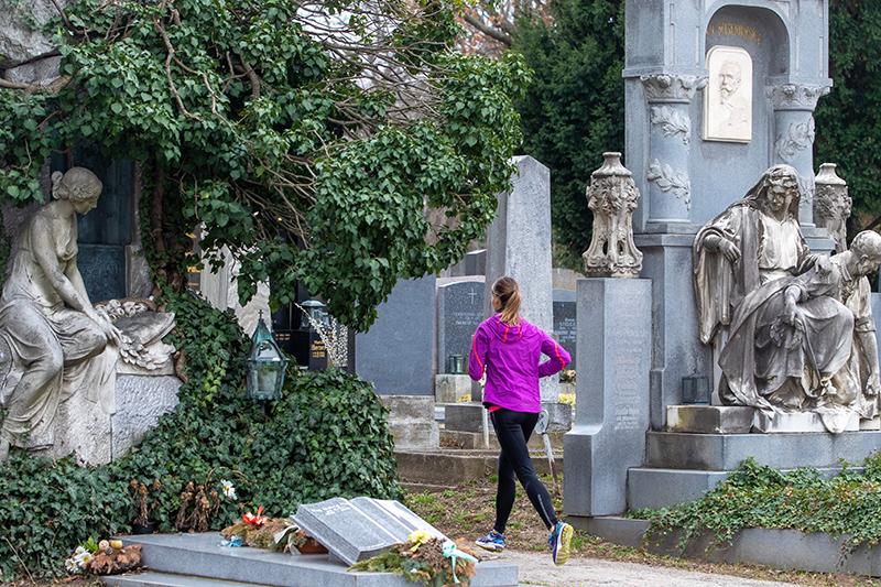 Laufen am Zentralfriedhof