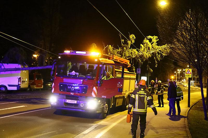 Feuerwehr mit umgestürzten Baum in der Nacht