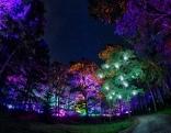 Blockheide Leuchtet Naturpark Festival