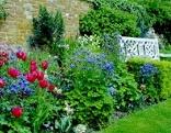 Frühlingshafter Staudenborder im englischen Stil