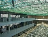 Die neue Universitätsbibliothek