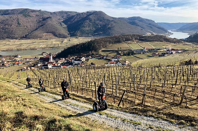 Segway Tour Wachau Weingärten