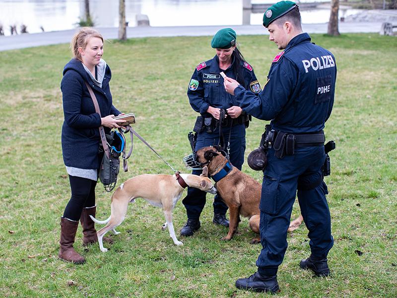 Polizisten der Polizeidiensthundeeinheit (PDHE) mit ihren Hunden bei einer Kontrolle