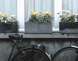 Frühling: Blumen im Kisterl und angelehnte Fahrräder