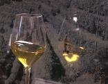 SSC Wein Kulinarik Ramandolo