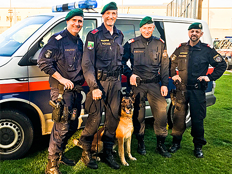 "Polizeihund ""Apollo"""