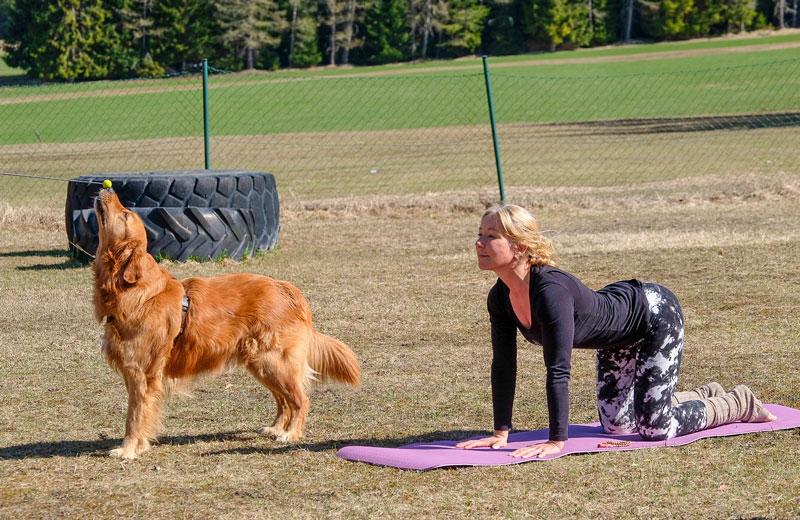 Hund und Yogalehrerin zeigen die Übung Kuh