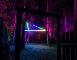 Naturpark Blockheide leuchtet 2019