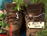 Kräuter in Schuhen