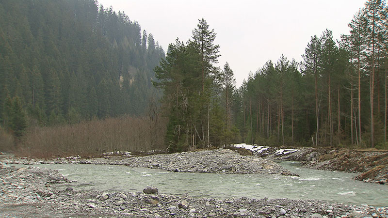 Der Lech Wildflusslandschaft