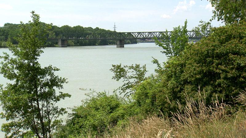 Donaubrücke Mauthausen