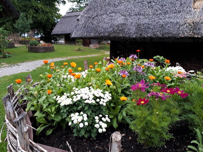 Bajuwarengehöft Mattsee, Sommer, Blumen, Garten, schilfgedeckte Häuser