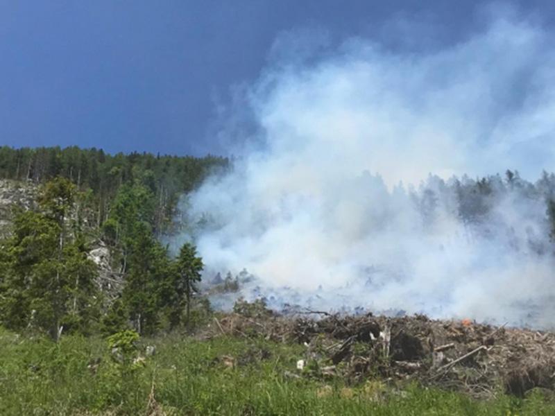 Brand Wald Zell Freibach