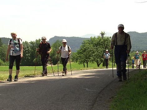 Planinska društva obmejna pohod planinci Škofiče